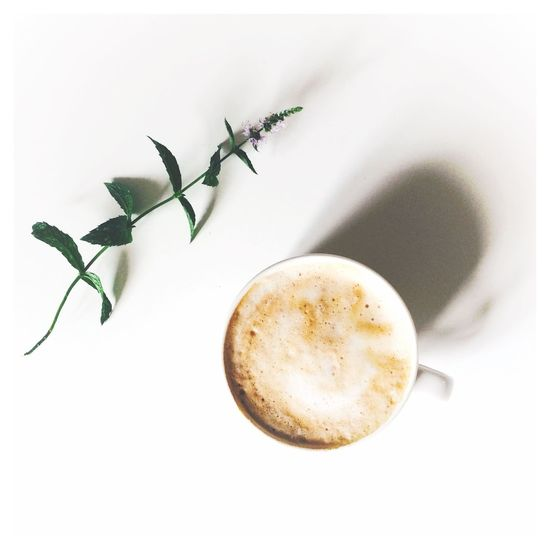 Liquid Lunch Coffee Coffee Time Coffee Break Coffee At Home Simplicity Simple Photography White Flower