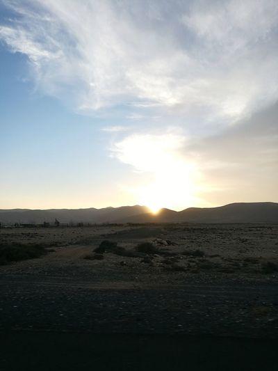 Sunset Water Flamingo Sand Beach Sea Sun Salt - Mineral Silhouette Sky