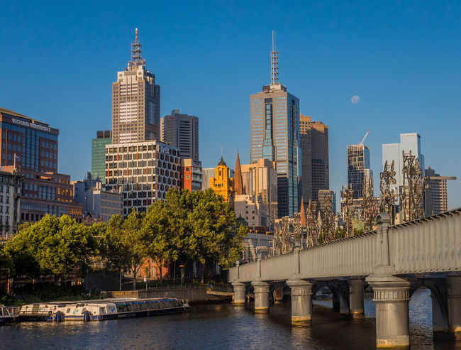 Architecture Blue Bridge - Man Made Structure Building Exterior Built Structure City Cityscape Clear Sky Day Day Time Moon Greenspace Illuminated Modern CBD Outdoors Sky Skyscraper Travel Destinations Tree Urban Plants Urban Skyline Water Melbourne Yarra River