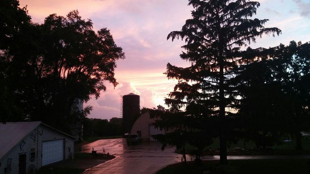 Nature On Your Doorstep bristol