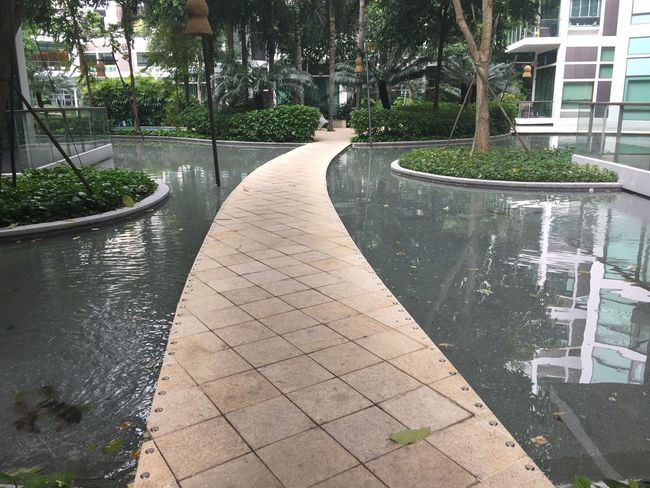 One of those places❤️❤️❤️ Singapore Singapore City Water Outdoors Architecture Leading Lines Follow The Path Walkway Footpath Pespective Tree Building Exterior No People Built Structure Landscaped Copy Space Palm Tree Day Tropical Climate Travel Backgrounds Waterfeature IPhone IPhoneography Follow