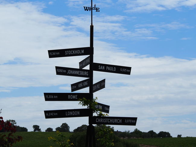Pathways of life. Choose wisely! Life Directions Traveling On The Road