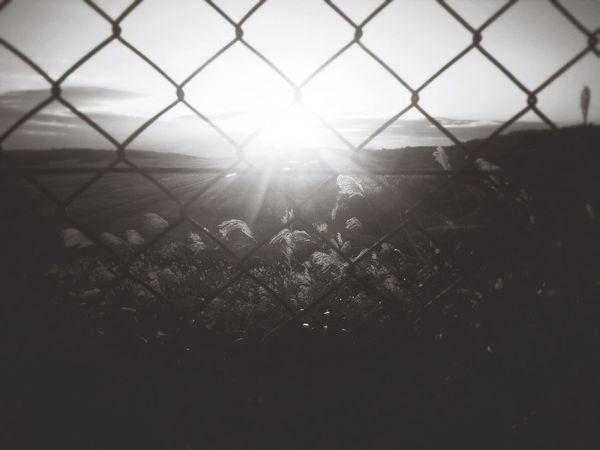 Blackandwhite Landscape Light Sunlight Sunset