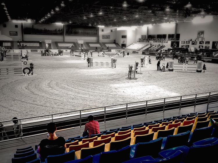 Horse Horsejumping Championship Work Filming EyeEm Broadcasting