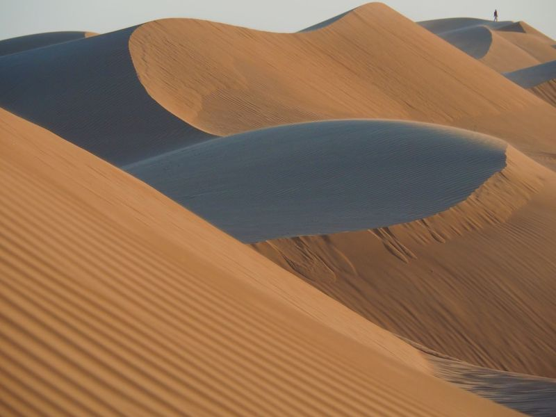 Lost In The Landscape Sand Nature Outdoors Sand Dune Tranquility