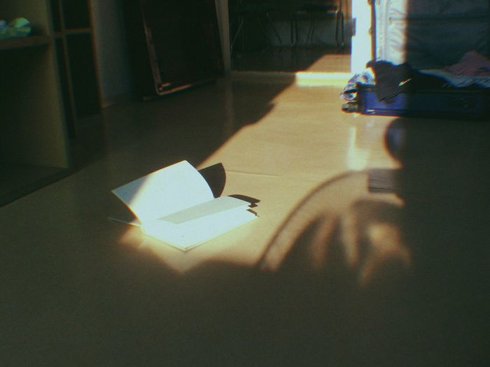 Reading a book Shadow Sunlight Paper Day