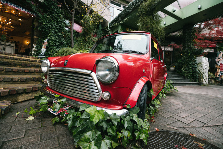 Mode Of Transportation Land Vehicle Red Transportation Plant Retro Styled Motor Vehicle Car Day Architecture City Built Structure Street No People Headlight Vintage Car Stationary Nature Old Outdoors Vintage