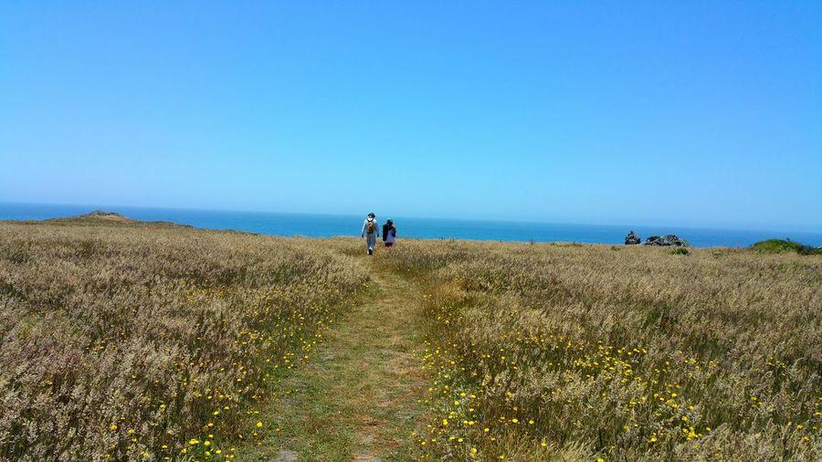 People Walking On Landscape Against Clear Blue Sky