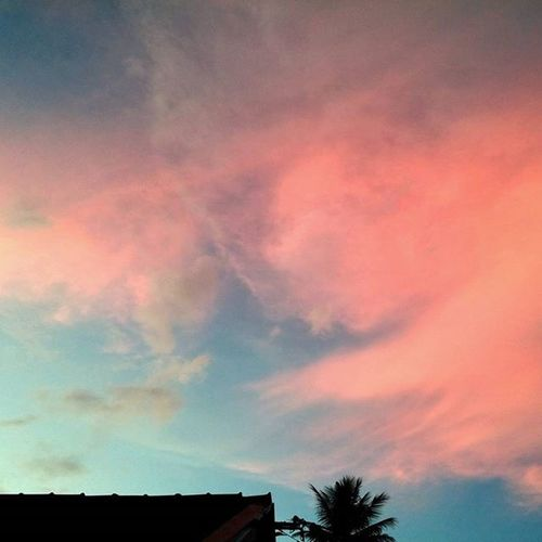 Travel Travelbook Mood Instamood Instadaily Inspiration Nature Shotoftheday Travelgram Igersoftheday Picoftheday VSCO Vscocam Bestoftheday Vacation Energy SriLanka Trip Igtravel InstaAsia Feeling Sky Bluesky Pinksky Palmtree palm evening
