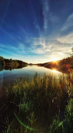 Water Tree Sunset Lake Sunlight Dawn Summer Sky Landscape Cloud - Sky