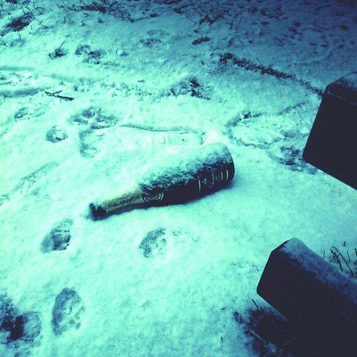 Praha Bottle Bohemia Sekt New Year Celebration Good Morning Its Cold Outside