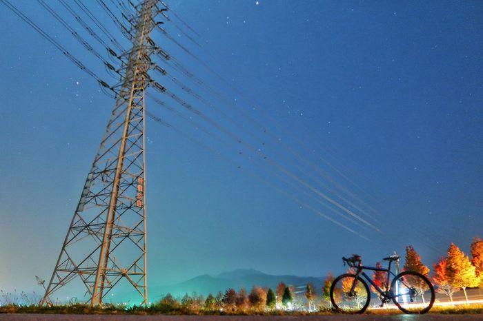 朝チャリ 朝 月 月光 鉄塔 高圧鉄塔 高圧送電線 月あかり 空 星空 自転車 サイクリング 並木道 紅葉 モミジバフウ Bicycle Transportation Star - Space Low Angle View Starry Sky Sky Nature Steel Tower  Electricity  Electricity Pylon