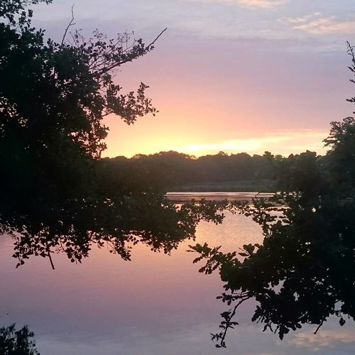Sunrise Tree Reflection Beauty In Nature Lake Water Sunset Nature Sky Silhouette Outdoors Tranquility No People Scenics Day Pixelated