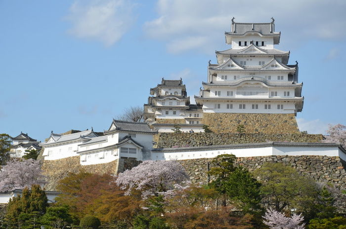 Himeji castle Architecture Building Exterior Built Structure Day Himeji Castle Low Angle View Nature No People Outdoors Sky Travel Destinations Tree