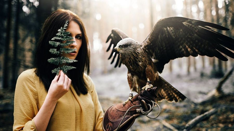 Portrait of beautiful woman standing with hawk while holding leaf in forest