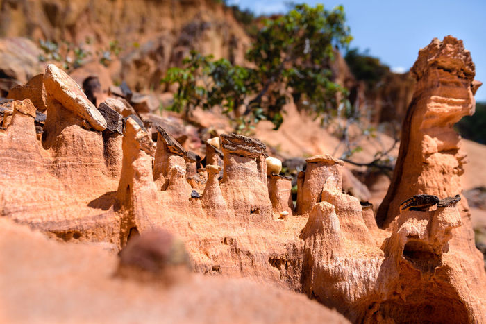 Aurora do Tocantins Desert Arid Climate Beauty In Nature Day Geology Nature No People Outdoors Physical Geography Rock - Object Rock Formation Rock Hoodoo Sunlight