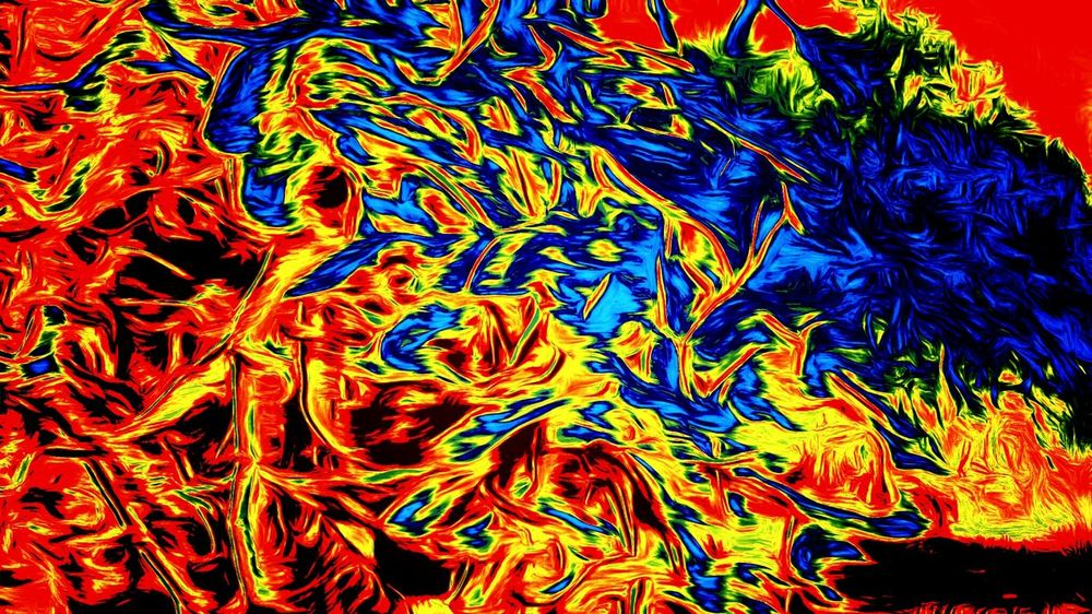 Backgrounds Multi Colored Pattern Full Frame Close-up Abstract No People Animal Themes Indoors  Day Out Of Order And Out Of Control Cartoonish Color Explosion Cartoon Effect