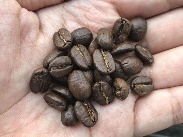 Fresh roasted coffee beans on human hand background. Raw Object Dark Light Seed Tasty Design Stack Group Prepare Fresh Morning Awake Style Retro Food Shape Frame Material Arabica Black Ingredient Background Full Roasted Coffee Bean Brown Gourmet Space Pattern Caffeine Beverage Grain Cafeteria Porcelain  Saucer Energy Breakfast Aroma Crop  Restaurant Espresso Check Agriculture Texture Drink Freshness Mocha Hand