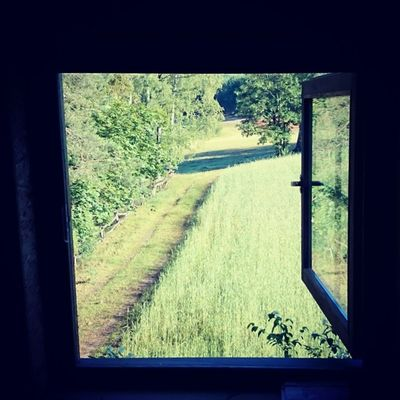Za oknem widok taki.bJapko