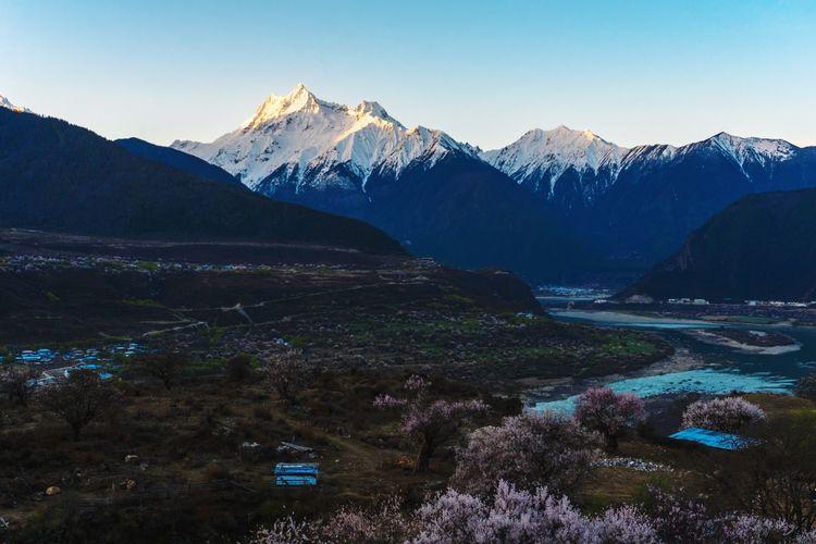索松村雪山 Tibet China Tree Winter Cold Temperature Forest Snowcapped Mountain Lake Pinaceae Wilderness