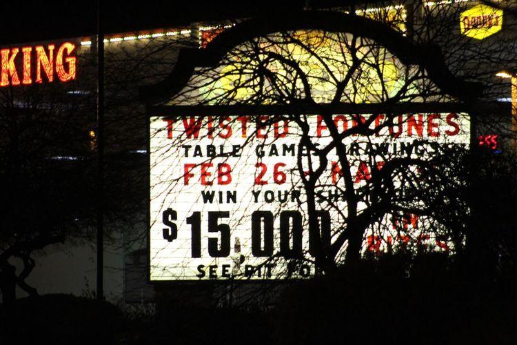Close-up of illuminated text on tree