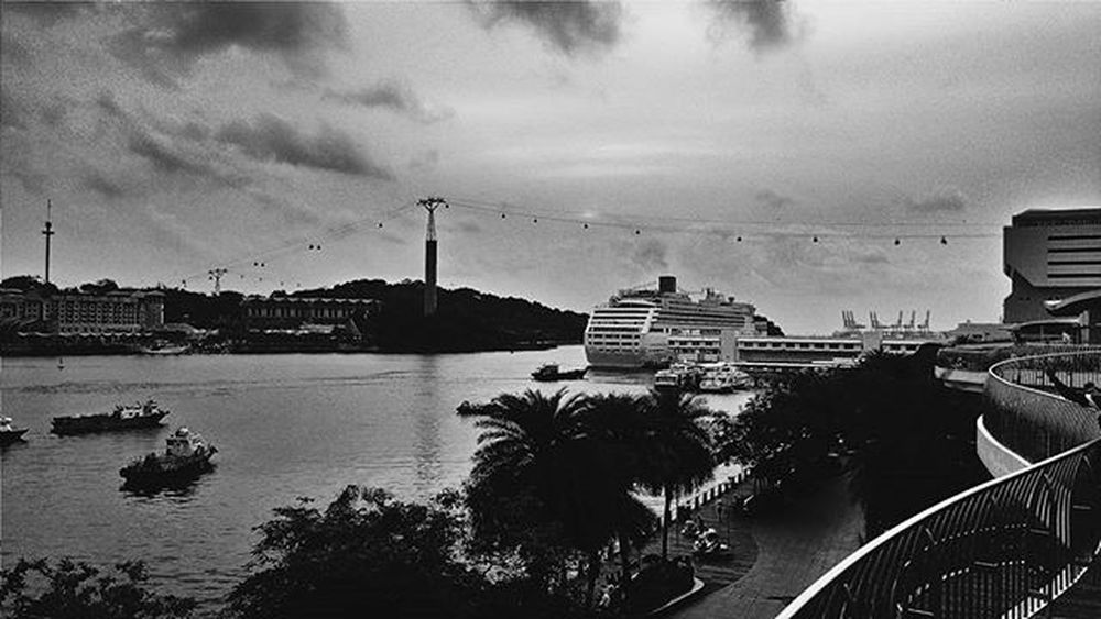 Beauty is in the eye of the beholder. Bnw Photo Photoftheday Theme VSCO Phone Cruise Scenery Hot Focus Beauty P R A D E E P Travel