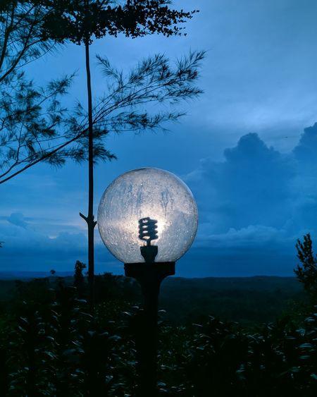 Lamplight Ball