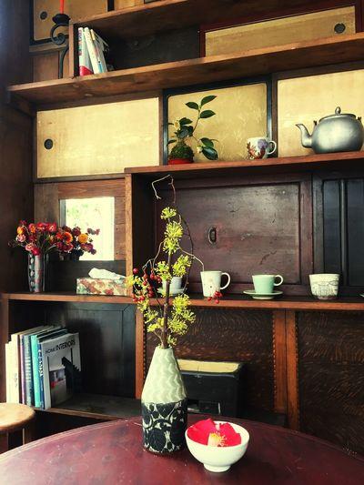 Home Interior Plant Nature House