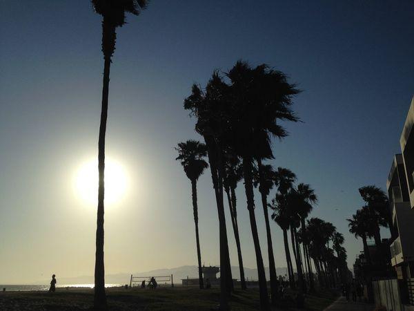 Walking Around The City  The Places I've Been Today EEA3-Santa Monica / Venice Beach Venice Beach NEMstreet Streetphotography Road Trip! Beach Photography Beachphotography Beach