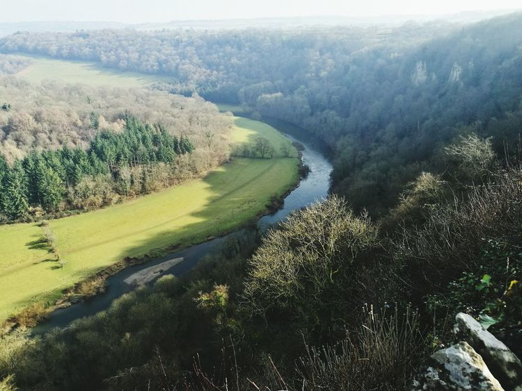 Wye Valley Nature Beauty In Nature Landscape Rural Scene Scenics Outdoors Water Gloucestershire Symonds Yat River Wye River Riverscape Valley Forest