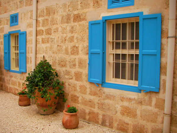Blue window facade, Haifa Haifa Wooden Shutters Wooden Slats Architecture Brick Wall Building Exterior Built Structure Day Door Flower Flowers Growth House Israel Nature No People Outdoors Plant Plant Pot Potted Plant Residential Building Shrub Window Window Box