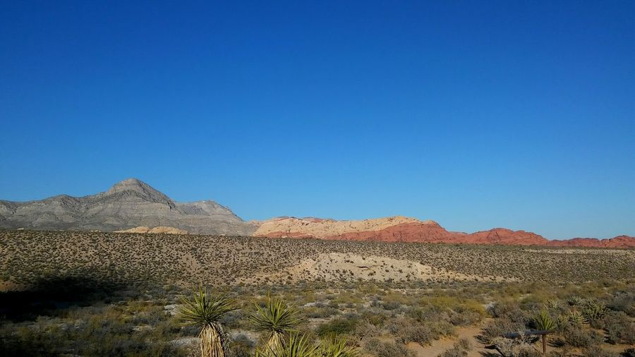 Landscape Scenics - Nature Land Desert Sky Environment Blue Mountain Clear Sky Tranquil Scene Nature Outdoors Beauty In Nature Canyons Beautiful Travel Red Rock Canyon State Park Red Rock, Las Vegas, Nevada Red Rock Canyon Travel Destinations