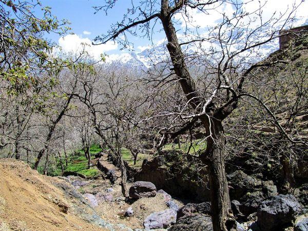 Imlil Nature