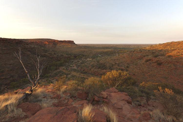 Landscape against sky during sunrise at kings canyon national park