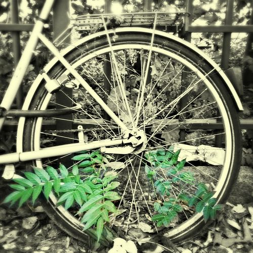 Run Down Bike