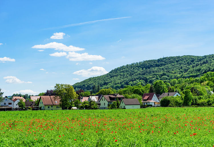 Scenic view of field by houses against sky
