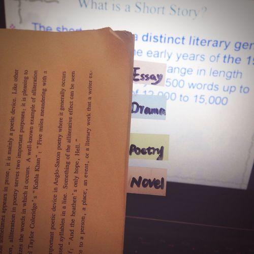 Final Exam Revison Literature