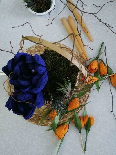 busket with moss, flowers and muskulents International Women's Day Busket Buskett Gardens Composition In Orange And Yellow Composition Forwomen Gift Work Working Flower Floral Moss Beauty The Still Life Photographer - 2018 EyeEm Awards A New Beginning