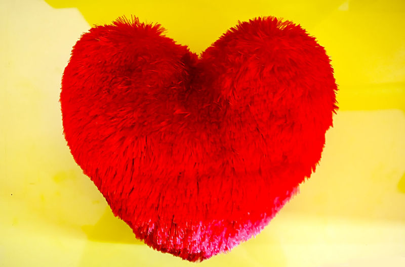 Celebration Close-up Dandelion Devine♥♥♥ Event Exploding Firework Firework Display Flower Fragility Freshness Glowing Heart Heartin Heartshape Love Love Symbol Lovely Multi Colored Night Red Ripe Softness Springtime