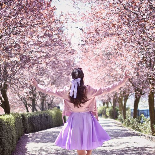 Rear view of woman standing by pink cherry blossom
