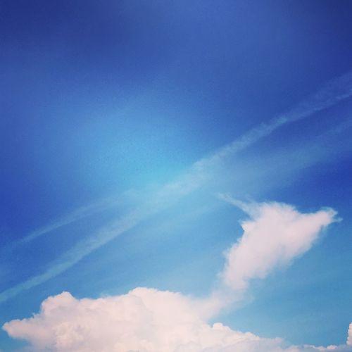 Clouds And Sky Kirin That's seems like a KIRIN.