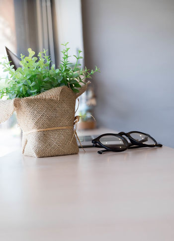 Close-up Container Day Eyeglasses  Freshness Glasses Green Color Growth Indoors  Leaf Nature No People Plant Plant Part Potted Plant Scissors Selective Focus Still Life Table Going Remote