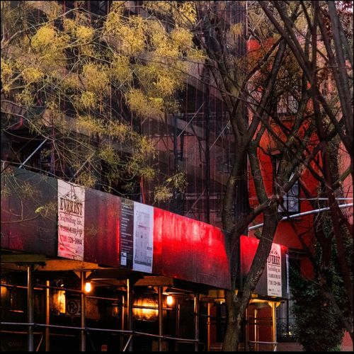 Early morning West 4th St. & 11th St. -1/1/16 Construction Site Golden Leaves & Bare Tree Low Light Post Production Selection & Color West Village Scenic