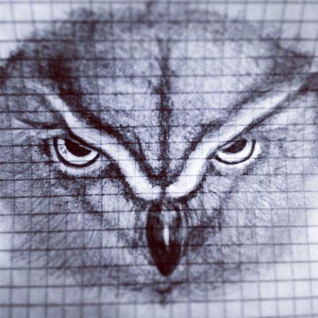 Owl Gufo Design Black & White