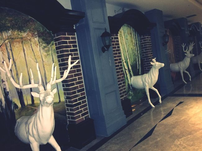 Deer Staute Taking Photos Animal Fake Art Article Inside House Check This Out