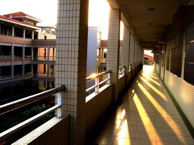 走廊 母校