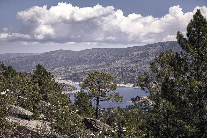 Panoramic of