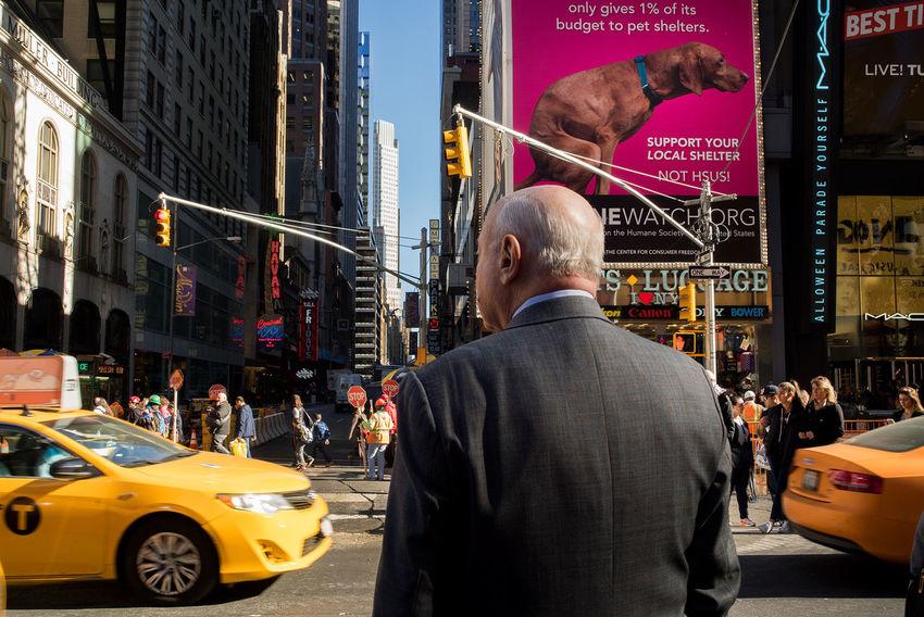 The Tourist Street Photography Streerphotography SonyA7s Showcase: February Enjoying Life New York New York City Funny Dog Dogs Dog❤ Dog Love