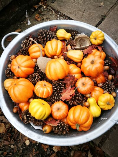 Close-Up Of Pumpkins And Pine Cones In Container