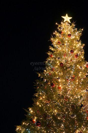 とってもキレイ♪横浜赤レンガ倉庫 Christmas Lights Christmas Market ♡ Christmas 2013